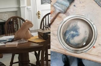 коты повсюду