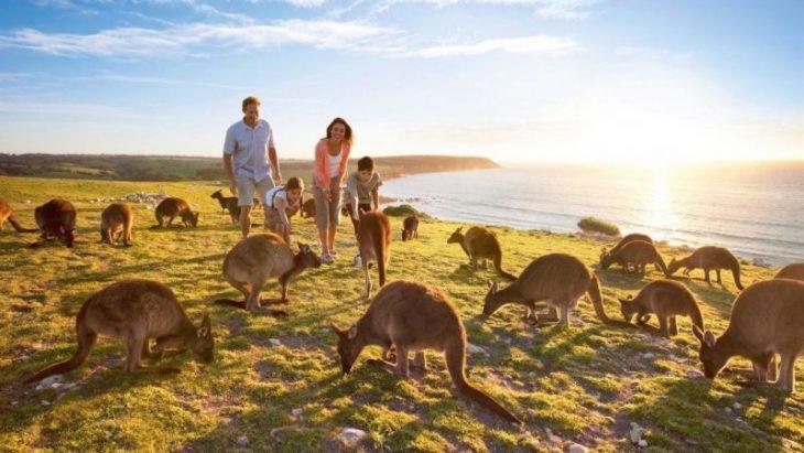 Красота Авcтралии в захватывающих фотоснимках