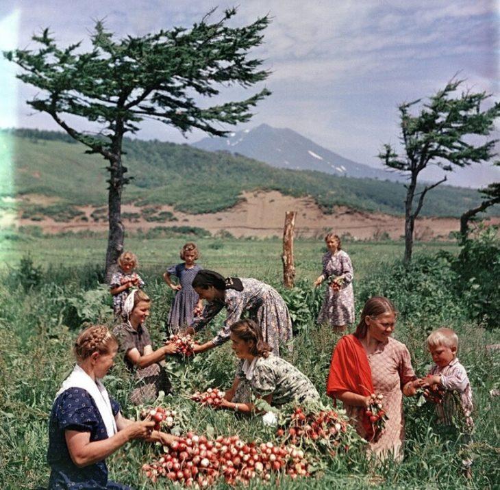 25 веских причин вернуться в 70-е в СССР