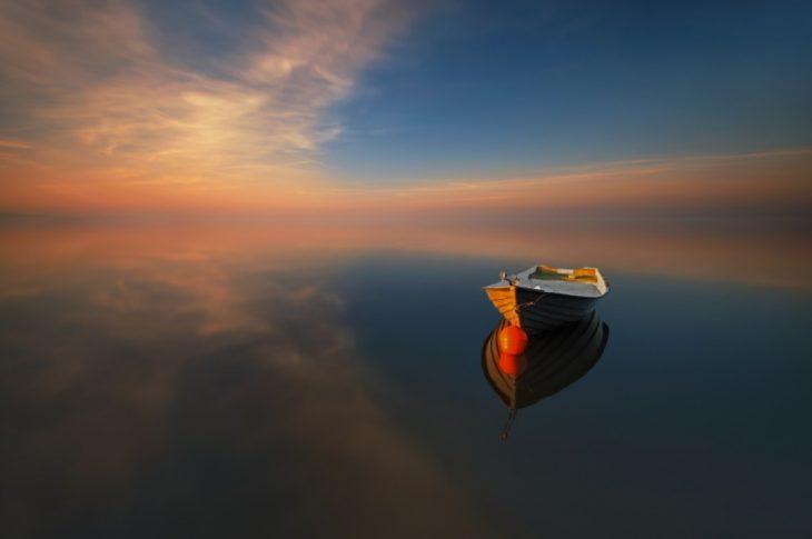 Удивительные снимки природы, где нет ничего лишнего